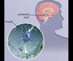Obat Parkinson Herbal